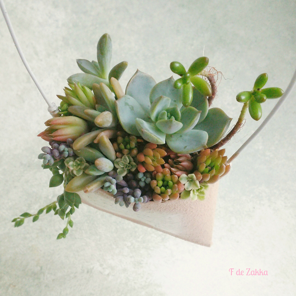 succulent-arrangement
