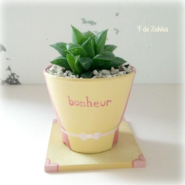 可愛い植木鉢と多肉植物