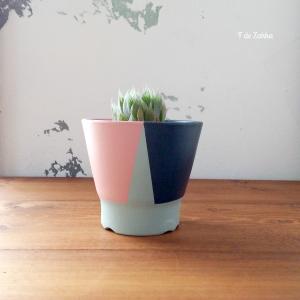多肉植物の植木鉢