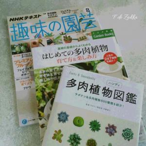 多肉植物の本