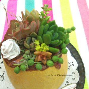 プリン鉢の寄せ植え
