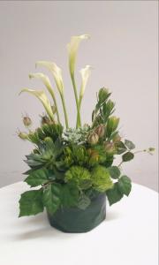 多肉植物と花のアレンジメント