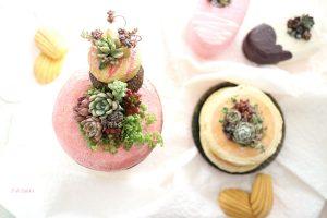 多肉と植木鉢のスイーツパーティー