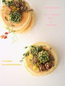 多肉パンケーキの寄せ植えワークショップ
